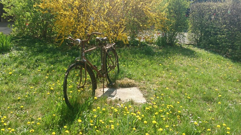 Fahrrad Impuls